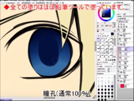 瞳孔(通常100%)