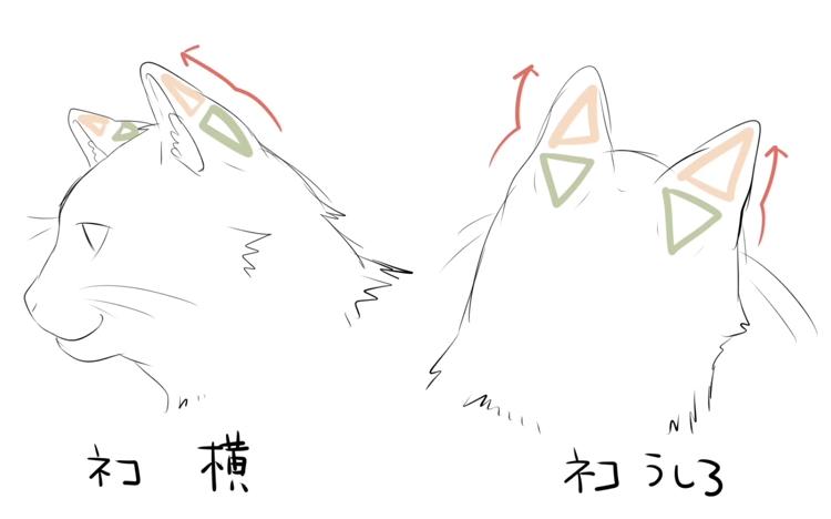説得力のある獣耳の描き方講座_by_冬空_実|マンガ・イラストの描き方講座:お絵描きのPalmie(パルミー)_-_YouTube 5